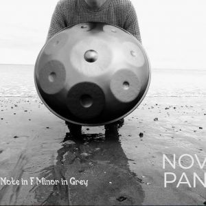 8 Note Handpan in F Phrygian Minor by NovaPans Handpans