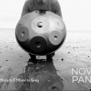 8 Note Handpan in F Phrygian Minor by NovaPans Handpans